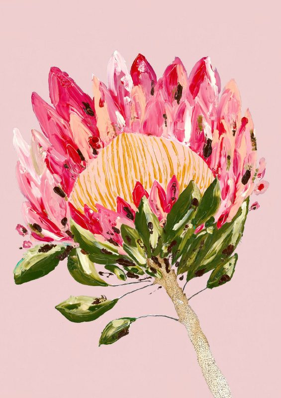 Grotti Lotti_protea party_pink